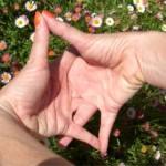 Astro Yoga June B